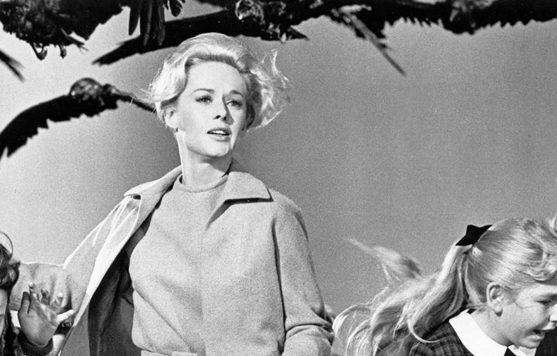 Alfred Hitchcock - Os Pássaros
