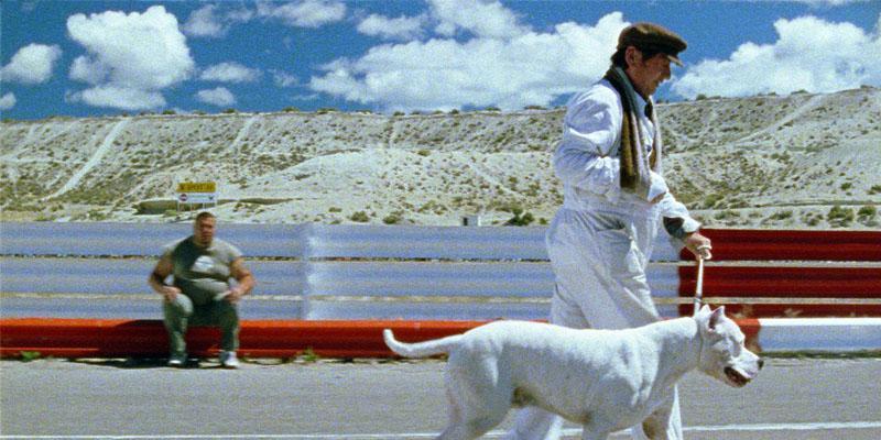 O Cachorro filme